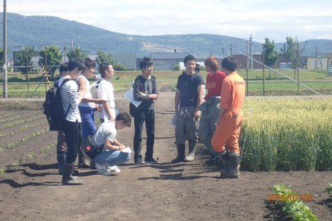 【画像】秋まき栽培の問題点何ですか?