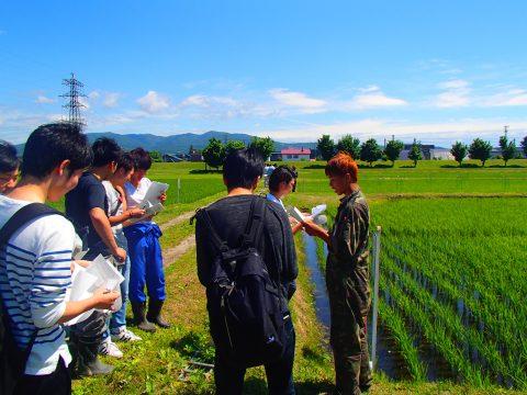 【画像】水稲栽培にも多くの人が集まりました