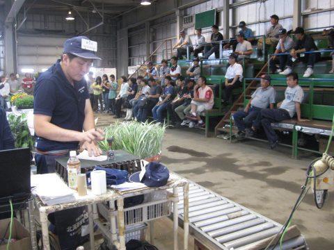 【画像】鉢花は少し離れた鉢専門のセリ場で競られています