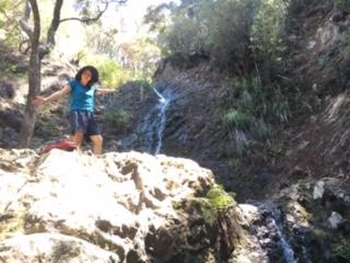 ハイキングで訪れた滝