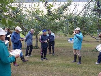 黒瀬普及員の栽培されているプルーン品種の説明を一般三カ所と遺書に聞きました