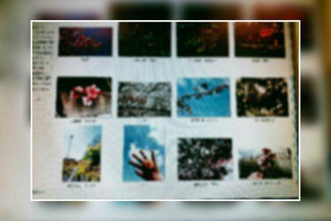 部室には多様な写真が集まります