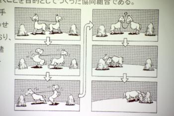 協同組合の精神をロバの漫画で説明されました