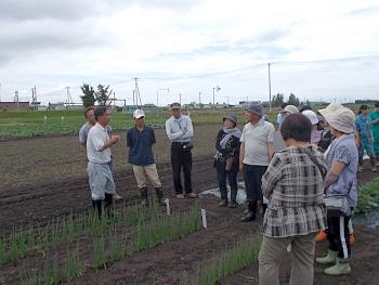 長ネギの追肥と培土奉納について