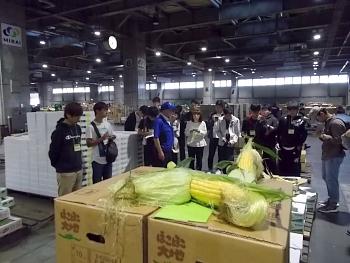 札幌卸売市場で入荷状況を視察