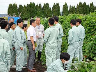 本学ほ場で栽培されている作物も見学しました