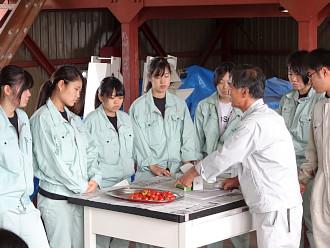収穫後のミニトマトの糖度測定実習です