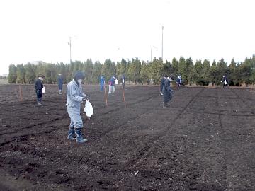 畑作圃場の施肥作業