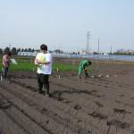 6今年の畑作実習は少数精鋭