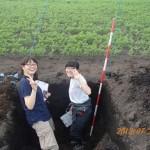 人参畑と土壌断面